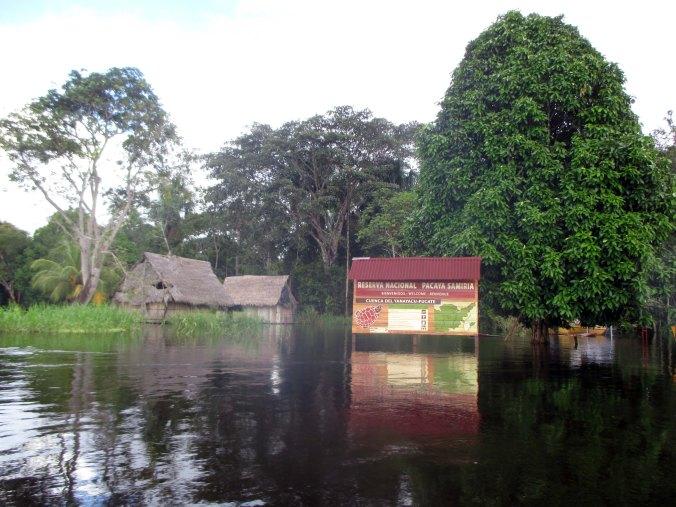 Reserva Nacional de Pacaya Samiria.