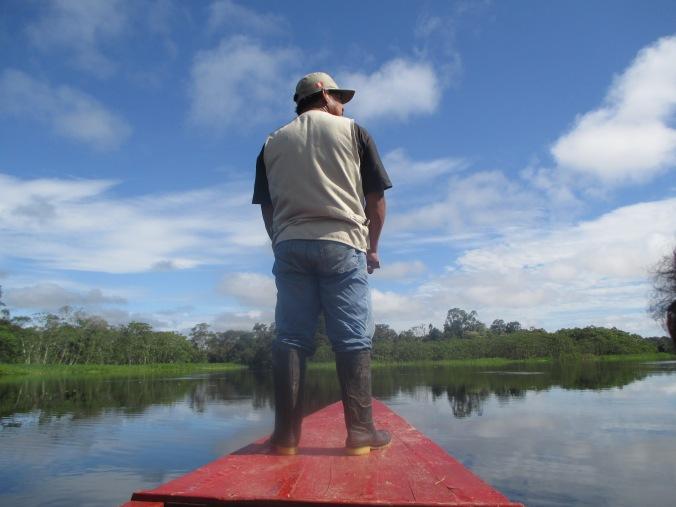Navegando río adentro para avistamiento de flora y fauna.